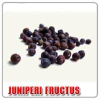 Juniperi-fructus