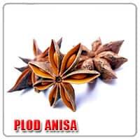 plod anisa